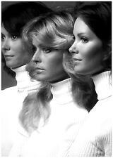 Farrah Fawcett's profile with Kate Jackson and Jaclyn Smith 8 x 10 Photograph