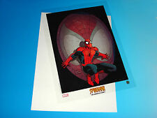 Spider-Man The Romita Legacy Lithograph Marvel Comics Universe Cel from 2001