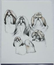 Shih Tzu Dog Laura Rogers Pet Notes Notecard Set of 10