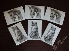 ** Vendita ** VUOTO FINE ART Cavallo Greetings Cards/Notelets 6 Pack. EX Cavalli da Corsa