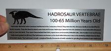 LARGE Hadrosaur Vertebrae Dinosaur Fossil  Metal Display Label