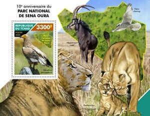 Chad Wild Animals Stamps 2020 MNH Sena Oura National Park Vultures Lions v S/S