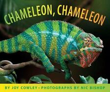 Chameleon Chameleon by Joy Cowley c2010 VGC Hardcover