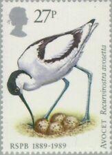 GREAT BRITAIN - 1989 - Pied Avocet (Recurvirostra avosetta) - MNH - Scott #1240