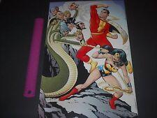 DC COMICS SUPER-FRIENDS TEAM-UP SHAZAM AND WONDER WOMAN POSTER PIN UP