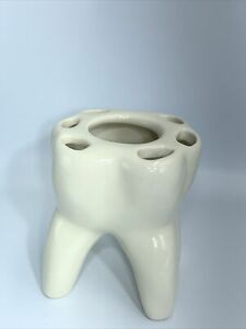 Toothbrush Toothpaste Odd Tooth Holder Rose usa Kids and Adults Weird