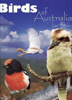 Birds of Australia (Young Reed) by Ian Rohr, Hardback