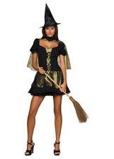 Secret Wishes Wicked Witch Ladies Fancy Dress Halloween Costume Size S New