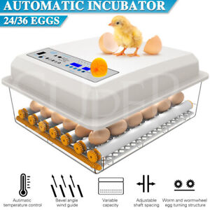 Fully Automatic 24/36 Egg Incubator Digital Led Turning Chicken Eggs Poultry