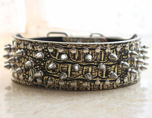 Gold Gator Leather Dog Collars Spikes Studs PitBull Bully Boxer Terrier S M L XL