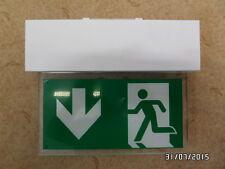 RettungszeichenLeuchte Piktogramm HinweiszeichenLampe FluchtwegKennzeichnung