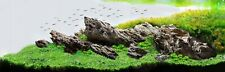 AQUARIUM DRAGON ROCK IWAGUMI STYLE STONES FISH PLANTS AQUASCAPING NATURAL STONE
