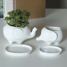 Set of 2 Cute Elephant White Ceramic Flower Pot with Tray for Succulents Ca I7I7
