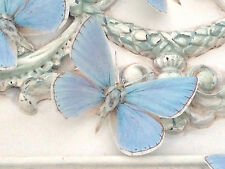 British Butterflies Butterfly Decorations 4 Tiny Blue Adonis Hand Made New Gift