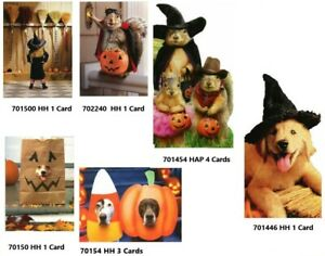 Halloween Cards Avanti Press 11 Value Pack Dogs, Squirrel, Witch