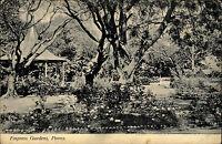Poona Pune Indien India alte AK ~1910 Empress Gardens Parkanlage Park Baum Bäume
