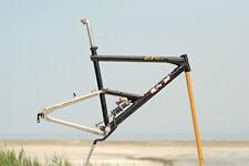 GT RTS mountain bike frame Noleen piggyback shock frame