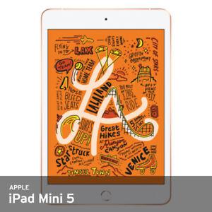 Apple 2019 iPad Mini 5th Gen 7.9In Wi-Fi 64GB Unlocked 64G/3Gb 300g FedEx /Gold