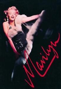 Marilyn Monroe A Never Ending Dream  Hard Back