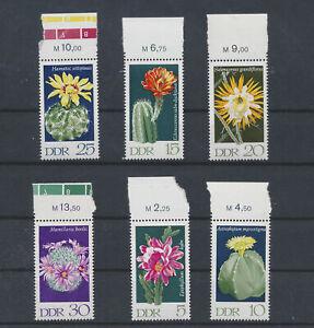 LN50834 Germany DDR cactus plants flowers edges MNH