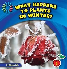 What Happens to Plants in Winter? (21st Century Basic Skills Library: Let's Look
