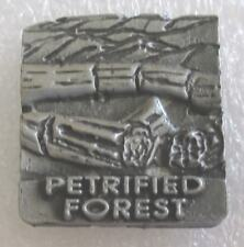 Petrified Forest National Park Tourist Travel Souvenir Collector Pin-Arizona