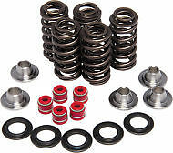 CAN AM DS 650 KIBBLEWHITE VALVE SPRING KIT 00-07 91-91000 DS650 91-91000