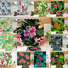 HOT TROPICAL FLOWERS POLYESTER BATH SHOWER CARPET MAT RUG CURTAIN W HOOKS 71""