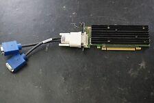 nVidia Quadro NVS 290 256MB Dual DVI Monitor Video Card Model P538