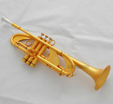 """Professional Matt Gold HEAVY Bb Trumpet Horn Germany Brass 0.459"""" Bore With Case"""