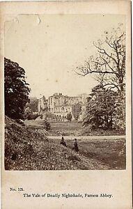 Albumen CDV Vale Deadly Nightshade Furness Abbey Poss Francis Bedford 1860s