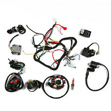Full Electrical Wiring Harness Kit For Chinese Dirt Bike ATV QUAD 150-250