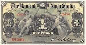 Jamaica  1  Pound  1.2.1919  S 131s Specimen  Scarce Uncirculated Banknote