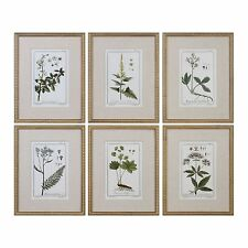 Vintage Style Leaf Berry Flower 6 pc Wall Art Set | Beaded Gold Frame Botanical