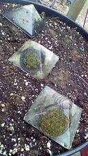 Flower/Seed of Life & Metatron's Cube Orgone Pyramid