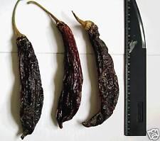 50 SEEDS Aji Panca Hot Pepper Capsicum chinense