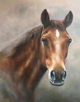 ZWOP33 ABSTRACT 100% hand painted animal horse ART OIL PAINTING ON CANVAS