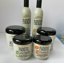 Professional Hair Care- Parnevu- Hair Treatment For Damaged / Dry Hair