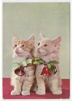 Natale vintage foto cartolina coppia gatti fiocco campane decorazione natalizia