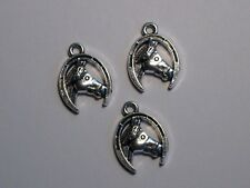 10 - HORSE HEAD INSIDE A HORSESHOE COUNTRY CHARMS NECKLACE, BRACELET EARRINGS.