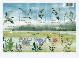 D146456(1) Belgium Imperforate S/S MNH Birds Flowers