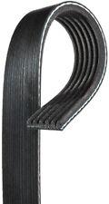 Serpentine Belt-Premium OE Micro-V Belt Gates K060864