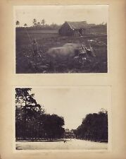 Vietnam Indochine 5 Photos sur le même carton Vintage argentique ca 1920