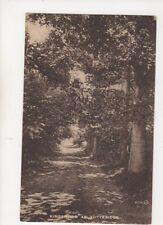 Kingswood At Totteridge London Vintage Postcard 248b