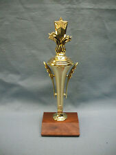 star Cup trophy award solid wood base