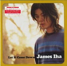 James Iha-Let It Come Down-Japan LP Limitada / Ed. I98