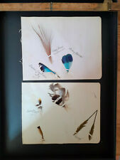 More details for antique indian feathers paddy bird indian partridge jay squirrel himalayan
