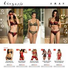 Established Profitable Lingerie Store Turnkey DropShip Website Business For Sale