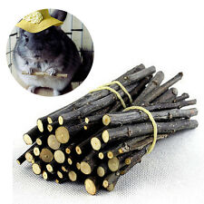 KE_ Apple Wood Chew Sticks Twigs for Small Pets Rabbit Hamster Guinea Pig Toy