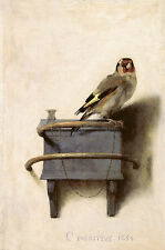 "The Pet Goldfinch Aviary Wall Art Painting Large 12.2""x 16"" Real Canvas Print"